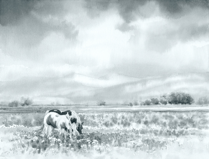 Grazing a Spring Meadow - Value Study